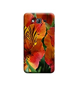 EPICCASE Premium Printed Mobile Back Case Cover With Full protection For Samsung Galaxy On5 (Designer Case)