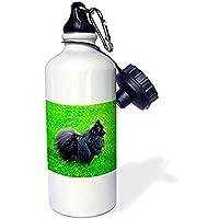 Byron21Mond Black Pomeranian Sports Water Bottle, 21 Oz, White