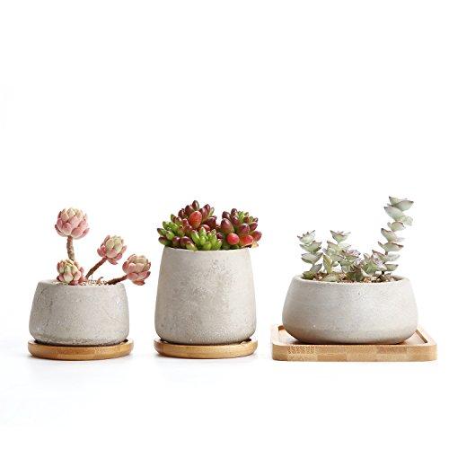 T4U Zement Sukkulenten Töpfchen mit Untersetzer Rund 3er-Set, Beton Mini Blumentopf für Kaktus Miniaturpflanzen -
