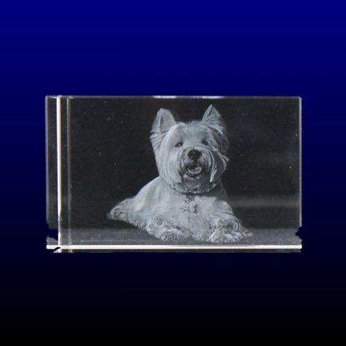 VIP-LASER 3D Glaskristall Größe L graviert mit dem Foto Ihres Hundes