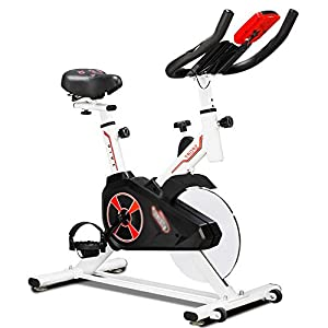 41RGLGA4z3L. SS300  - Sumferkyh Indoor Cycling Mute Bike Advanced With Training Computer And Elliptical Cross Trainer Calories