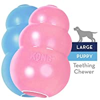 KONG - Puppy Toy Natural Teething Rubber -Fun to Chew, Chase & Fetch- For Large Puppies (Color May Vary)