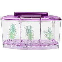Cikuso Triple Cubo 6 Luz Led Betta Acuario Caja de Desove Separada Pecera Púrpura
