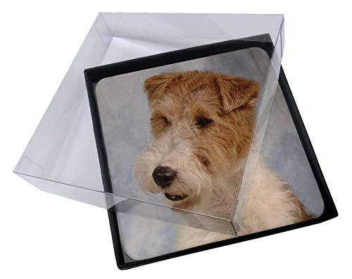 Advanta - Coaster Set 4X Fox -Terrier-Hund Bild Setzer gesetzt -