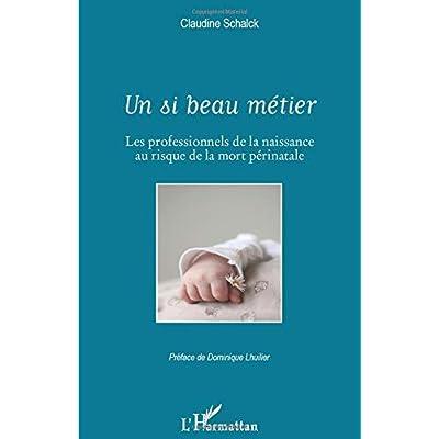 Un si beau métier: Les professionnels de la naissance au risque de la mort périnatale