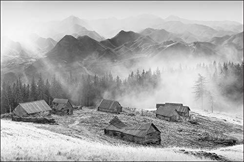 Muralo Fototapete Berge Schwarz-Weiß 240x360 Vlies Bäume Ansicht Ökosystem - 127818908
