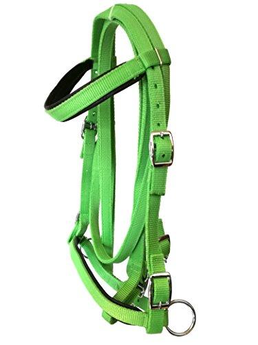 JF-Reitsport Trensen Set Nylon Zügeln Gebisslos grün Pony