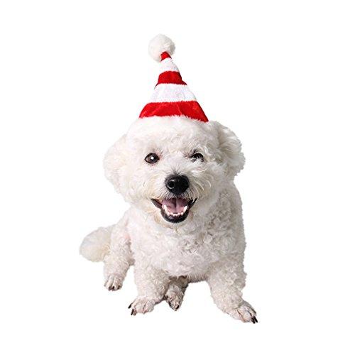 Weihnachten rot weiß gestreift Katzen Hunde Hat Festive Kleid bis Pet Supplies Weihnachten (Kürbis Erwachsene Kostüme Klassische)