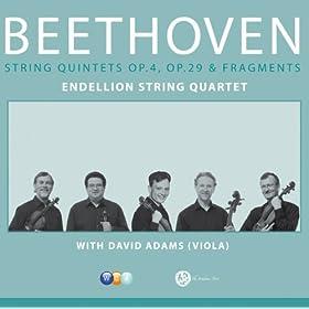 Fugue For Quintet In D Major Op.137 Allegretto