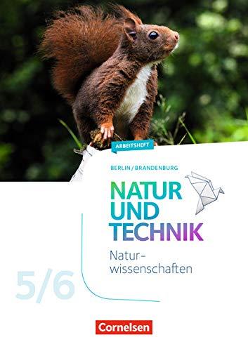 Natur und Technik - Naturwissenschaften: Neubearbeitung - Berlin/Brandenburg: 5./6. Schuljahr: Naturwissenschaften - Arbeitsheft - 5./6. Schuljahr