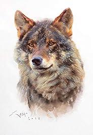 Lobo ibérico - Lámina sobre lienzo. Cuadro de lobo ibérico (Canis lupus signatus) 32 x 24 cms. Cuadros de lobo