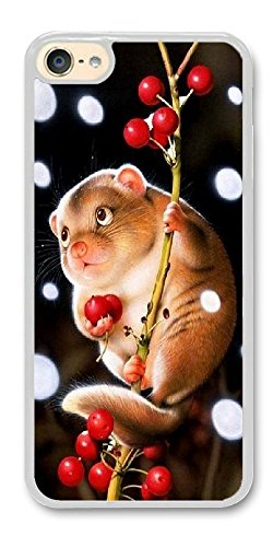 BBMMcase Personalize ipod Touch 6 Cases - Rabbit Hard Plastic Phone Cell Case for ipod Touch 6