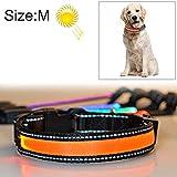 KANEED Hundehalsbänder, Geschirre, Mittlerer und großer Hund Haustier Solar + USB-Lade-LED-Lichtkragen, Halsumfang Größe: M, 40-50 cm (Orange) (Farbe : Orange)