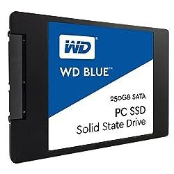 WD Blue 250GB Internal Solid State Drive (WDS250G1B0A)