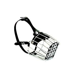Dingo Nombre Muselière en métal pour femelle Boxer Chiens