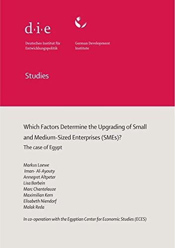 Which factors determine the upgrading of small and medium-sized enterprises  (SMEs): The case of Egypt (DIE Studies des Deutschen Instituts für