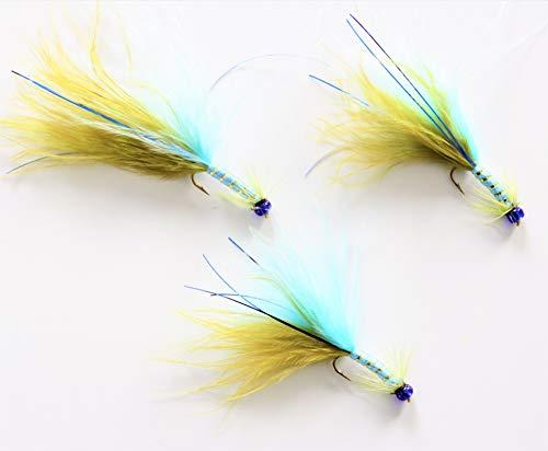 ARC Fishing Flies Forellenfliegen, Damsel Fliegen, Haken, Langer Korpus 12, zum Fliegenangeln, UK. 3 Fliegen.