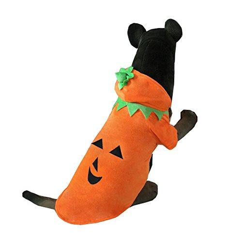 Pineocus Halloween Kürbis Stil für mittelgroße bis große Hunde 5XL (Große Hunde In Kostüme)