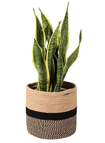 Goodpick Gewebter Baumwollseil Pflanzkorb für 25,4 cm Blumentopf Boden Indoor Pflanzgefäße, 27,9 x 27,9 cm Aufbewahrungskorb, Organizer Modern Home Decor -