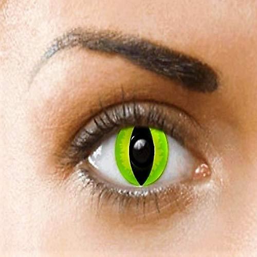 PHANTASY Eyes® Lentes de contacto de color - Halloween Crazy lens (GATO VERDE) ropa de fiesta anual, sin dioptrías: cómodos de usar e ideales para Halloween o Carnaval. + funda de lentes gratis