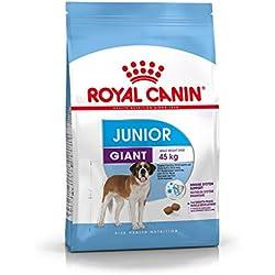 Royal Canin - Giant Junior 31 - Nourriture pour jeune chien - Très grandes races - 15 kg