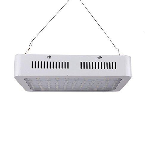 TXVSO 600W LED Planta Crece la luz, Full Spectrum para Invernadero y Planta hidropónica de Interior Florecimiento de Verduras Lámparas de Cultivo Menos Calor y rendimientos más Grandes