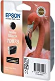 Epson C13T08784010 Patrone für Stylus Photo 1900, mattschwarz