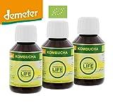 3 botellas de 100 ml Kombucha concentrada, Produce: 1 litro de kombucha o de 1 a 3 litros de zumo de frutas.