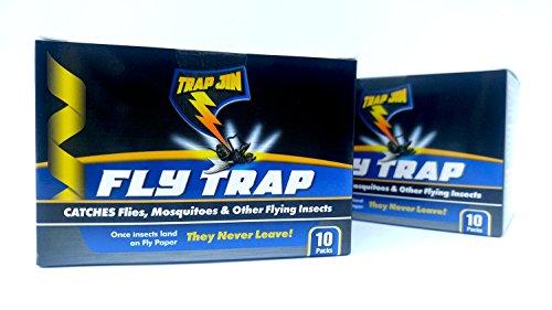 Trap JIN