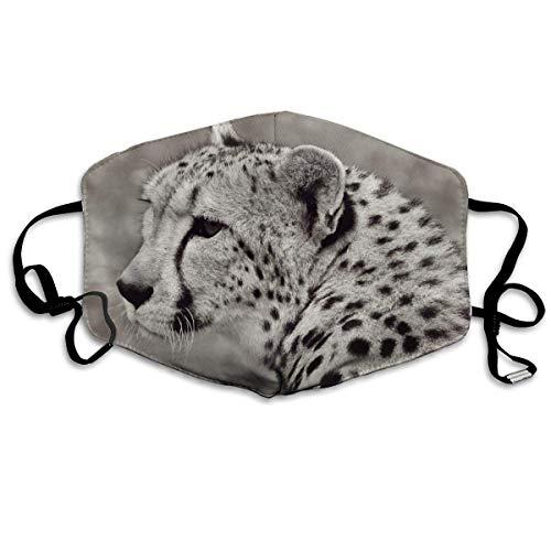 Masken für Erwachsene Waschbare wiederverwendbare MundMaskene Cheetah Cat Animal Safari Nature Reusable Anti Dust Face Mouth Cover Masken Protective Breath Healthy Safety