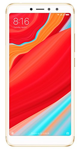 Redmi Y2 (Gold, 64GB)
