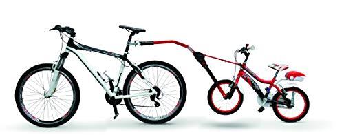 Carrelli per bicicletta