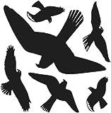 Warnvögel Herma schwarz 30x30cm 5999