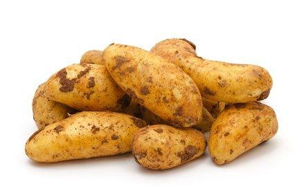 Fruchtknall Kartoffeln Annabelle fest 5 kg