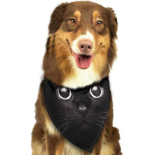 Happy Halloween Bandana Coole Neuheit Hund Katze Bandana Halstuch Mode-Accessoires