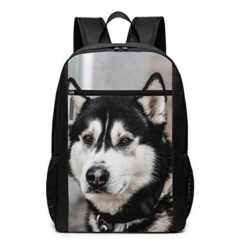 Vintage Laptop Backpack, Husky Dog College School Computer Bag for Women Men