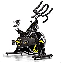 Ciclo Indoor PRO-SPIN Bike ION 7