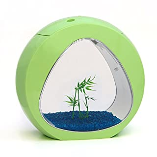 allpondsolutions Nano Curve Aquarium, Kaltwasser, tropisch, LED-Beleuchtung, 13,5Liter, Limettengrün