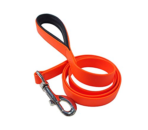 durable-nylon-12-m-handle-dog-leash-orange