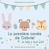 La première année de Gabriel - de bébé à tout-petit: Album bébé à remplir...