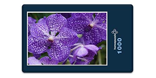 hansepuzzle 46448 Natur - Blume, 1000 Teile in hochwertiger Kartonbox, Puzzle-Teile in wiederverschliessbarem Beutel