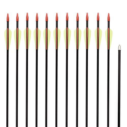 Anladia 12er Fiberglaspfeil für Bogenschießen, 28 Zoll (74 cm) Bogenpfeile Pfeile 28 Zoll Fiberglaspfeil für Sportbogen, Recurvebogen, Langbogen