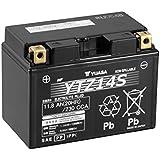 YUASA YTZ14S Batterie de Moto