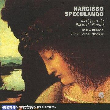 Firenze - Narcisso Speculando