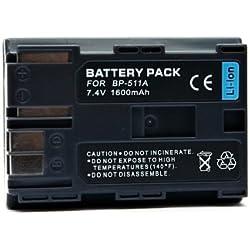 Batterie BP-511A Li-ION pour Canon EOS 5D - 10D - 20D - 30D - 40D - 50D - 300D - D30 - D60. 100% Compatible Ultra capacité 1600mAh.