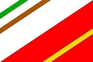 Unbekannt Flagge Banin | Municipal flag of Banín village | Banín, okres Svitavy | Querformat Fahne | 0.06m² | 20x30cm für Diplomat-Flags Autofahnen