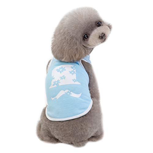 Robemon Hunde-Shirt,Mode Sommer Atmungsaktives Mesh Weste Ärmellose Kreative Bart Muster Welpen Kostüme Outfit für Kleine,mittlere Hunde (Kostüm Welpe Mädchen)