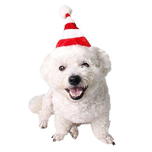 Sankt Hut Kappe Weihnachtsparty Zubehör Hund Katze Kostüm Für Kleine Haustiere ()