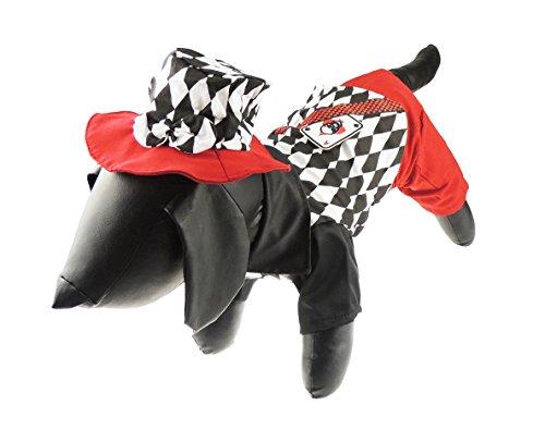 Funny Hund Katze schwarz & weiß kariert Vegas Card Shark Outfit & Hut Halloween-Kostüm