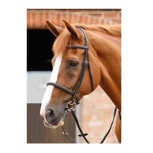 Premier Equine Trense mit englischem Reithalfter Mossimo Cavesson Bridle Größe Extra Full, Farbe Black